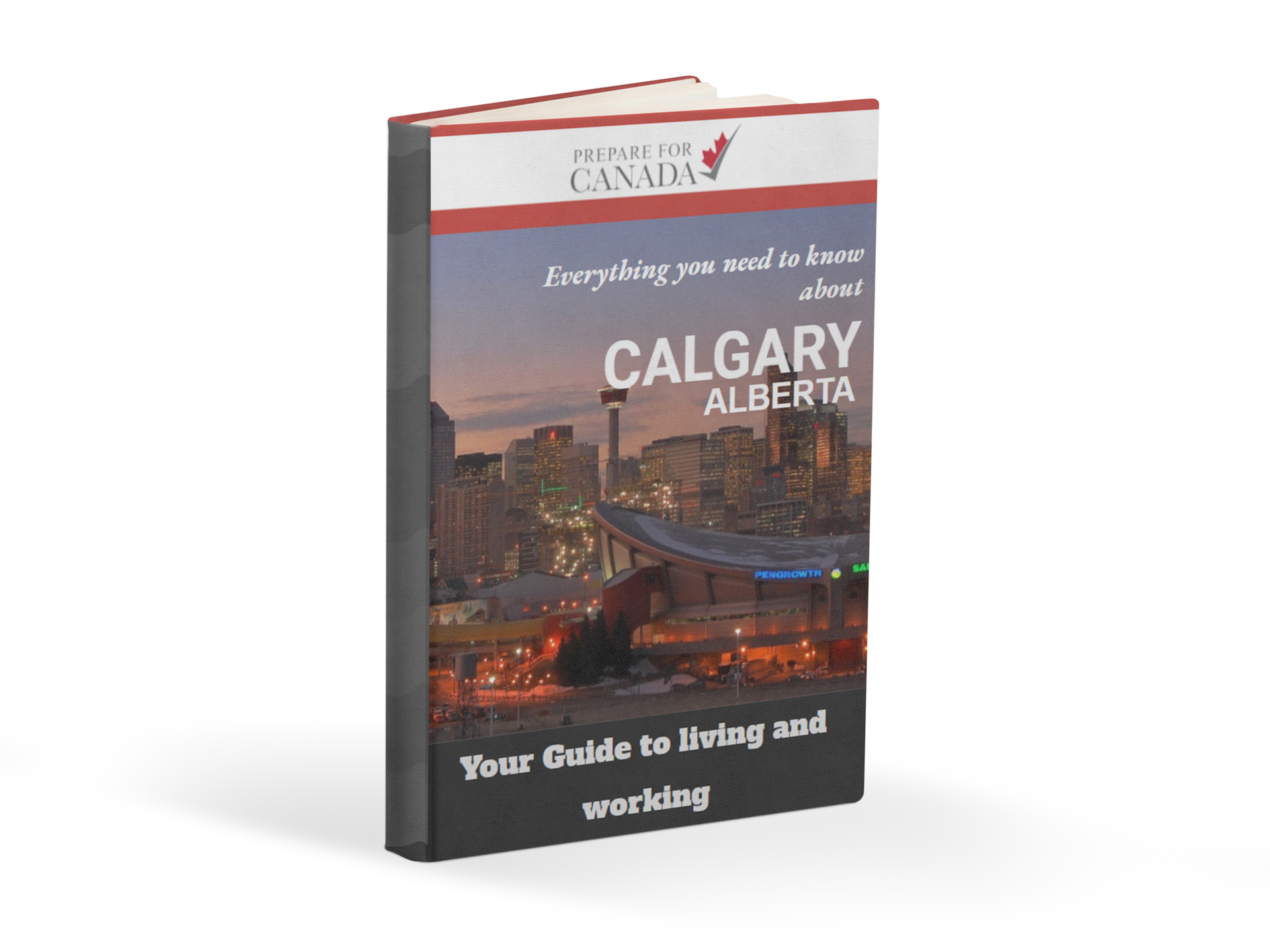 Calgary Ebook Cover 3D.png